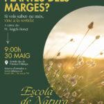 Escola de Natura: les plantes dels marges